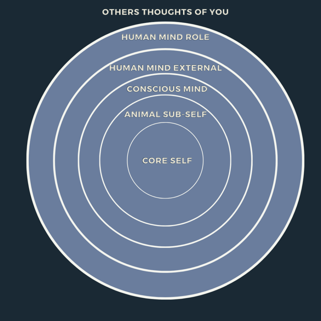 The layers of the mind is a graph representing: the core self, the animal sub-self, the conscious mind, the external human mind, the human mind role, and the others thoughts of you in the form of a circle.