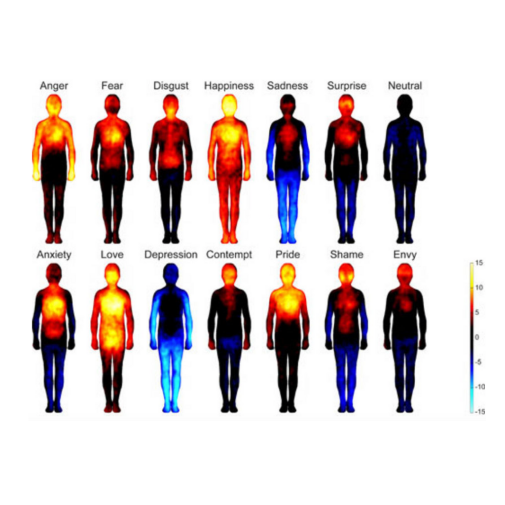 A picture of people with body parts marked in red or blue depending on the type of emotion.