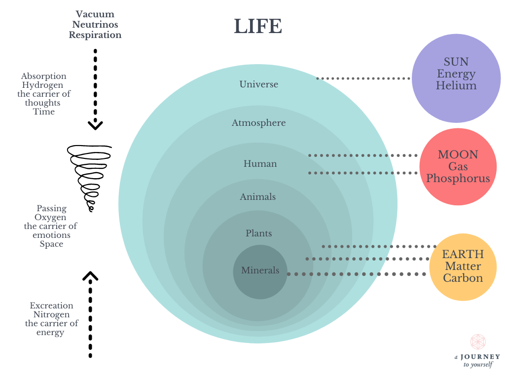 A diagram of the life it shows the sun, moon, earth, universe, atmosphere, human, animals, plants, minerals, hydrogen oxygen nitrogen.